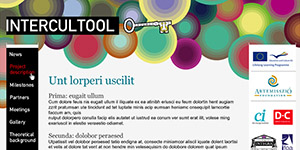 Intercultool