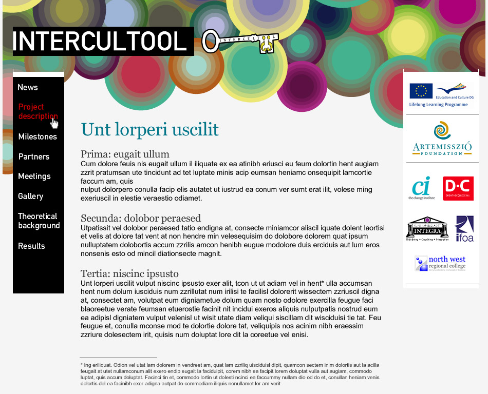 Intercultool website layout